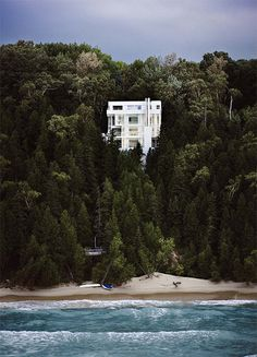 Scott Frances: The Douglas House #architecture #trees
