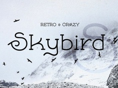 Skybird Free Unique Font