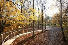 premier reg'art #kondo #a #architect #archi #in #lift11 #the #tetsuo #path #forest #japan #tallinn