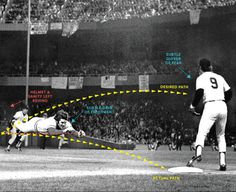 sports_peterose.gif (image) #layout #diagram