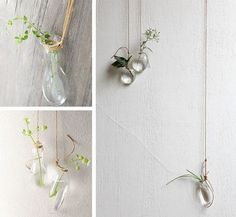 oh, hello friend: you are loved.: swoon: #hanging #plants #necklace