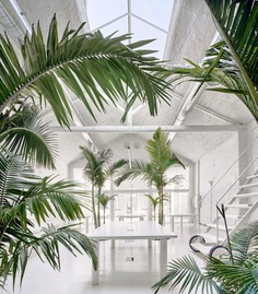 Acid House by ARQUITECTURA-G