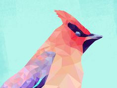 Waxwing #triangulation #red #triangles #bird