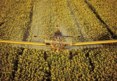 Aerial Photography by Kevin Fleming #inspiration #photography #aerial