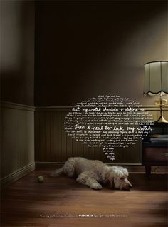 Timmie's Dog Spa – Fubiz™