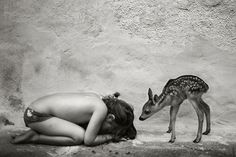 photo #photography #black and white #deer #beauty #friendship