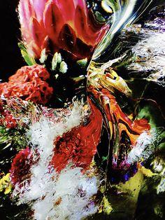flowers, Makoto Azuma