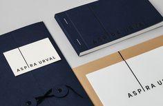 bvd_aspiraurval_05 #binding