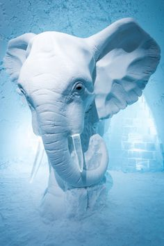 Amazing, amazing 'Elephant in the Room' sculpture in Sweden's Ice Hotel. Designed by AnnaSofia Mååg