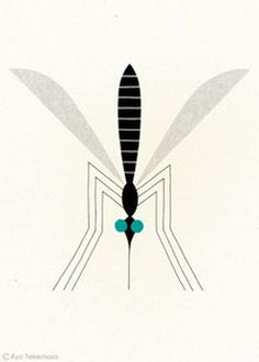 bug, wing, wings, illustration