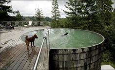 WANKEN - The Blog of Shelby White » Olle Lundberg California Cabin #lundberg #architecture #cabin #california #olle