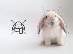 The living grid Logo Design by Gustavo Zambelli