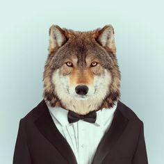 Zoo Portraits by Yago Partal #portraits #photography #animals