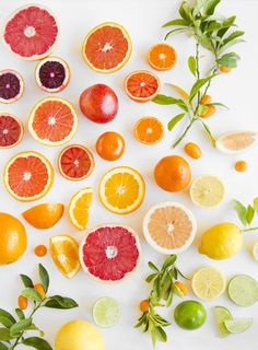 Citrus on White – angela hardison #photography #fruit #citrus