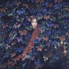 oprisco photography - portfolio #photography #flowers