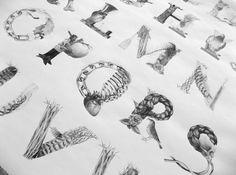 Luke Jones #alphabet #poetry #illustrated #typography