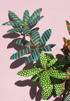 leaves, paint