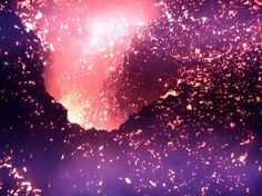 M a blog / Eiichi Izumi [Tokyo] #roots #of #volcano #life