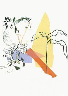Alicia Galer – Bursts of Botanicals