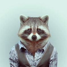 Photographer Yago Partal #portraits #photography #animals