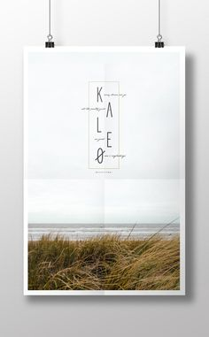 kaleo band poster, band, poster design, poster, music album, fan art, album, music, graphic design, simple design, clean design, nature, nat