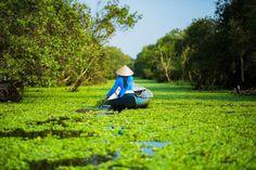 Travel Landscapes of Vietnam by Réhahn