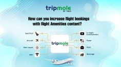 Tripmole   How can you increase flight bookings with flight Amenities content?