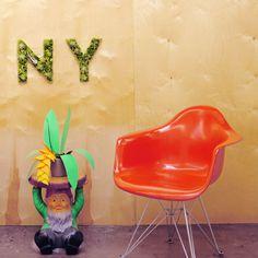 """""""NY"""" Garden #garden #hashtag"""