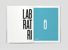 Dicionário das Ideias Feitas on the Behance Network #book #editorial #laboratory #lab #dictionary #laboratrio #flaubert