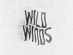 Wild Winds #matthew genitempo
