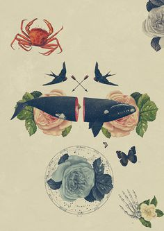 El Camino de la Vida on Behance