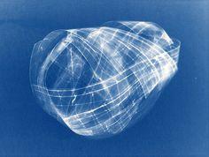 cyanotype.006.ij.sm #hepler #blue #anna