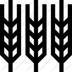See more icon inspiration related to food and restaurant, farming and gardening, wheat plant, wheat grain, cereal, rice, seeds, supermarket, branch, cereals, grain, grains, wheat, nature and food on Flaticon.