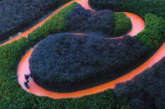T H E D I G G E S T . C O M #garden #skateboard