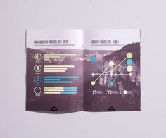 Taiga - DAVID TORR #print #annual #graph #report #booklet