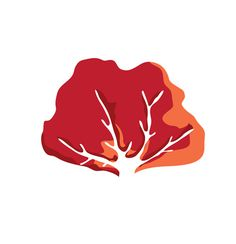 ACUARIO INBURSA - ICONOGRAFÍA on Behance #draw #reef #illustration #coral