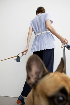 Minimal Lumi Dog Leash — minimalgoods