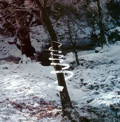 Andy Goldsworthy #tree #spiral #ephemeral #nature #ice