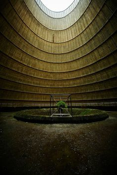 A Suspended Bonsai Inside an Abandoned Power Plant