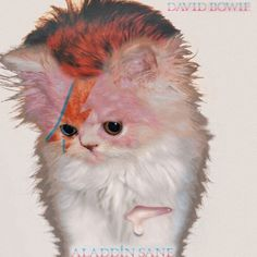 The Kitten Covers #parody #album