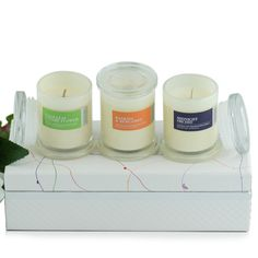 Scented Soy Wax Candle Botanicals Collection in Mini Metro Jar Set , 23 cm x 10 cm x 7 cm