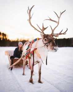 Nordic Adventure and Lifestyle Photography by Joonas Linkola