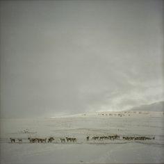 iceland - Tom Kondrat Photography