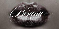 Erotica Webfont & Desktop font « MyFonts #type #script #typography