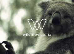 Wildlife Victoria on Behance #logo