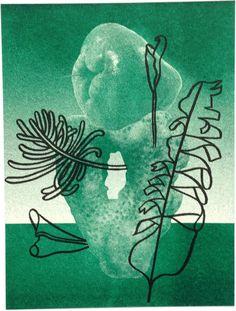 Keepsakes Stina Löfgren #illustration