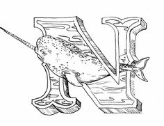 Narwhals are real. #n #narwhal #Alphabet #micron #letter #poster #lettering #pen #illustration