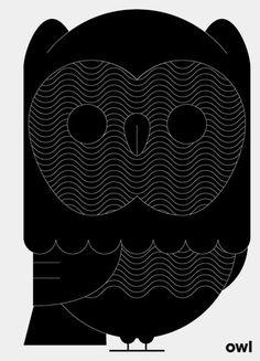 Owl. #owl