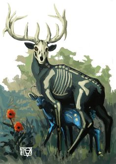 Watchful Eye by Eyestrain #deer #skeleton #illustration