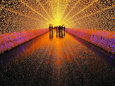 Japans Tunnel of Lights 8